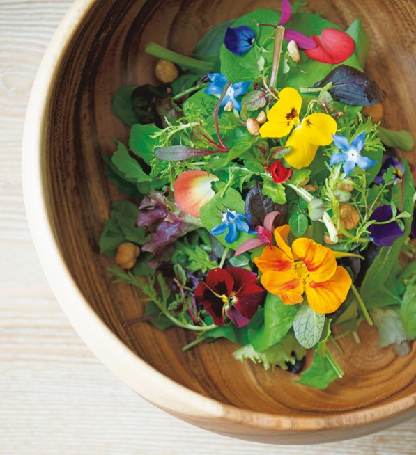 彩り奇麗なサラダ