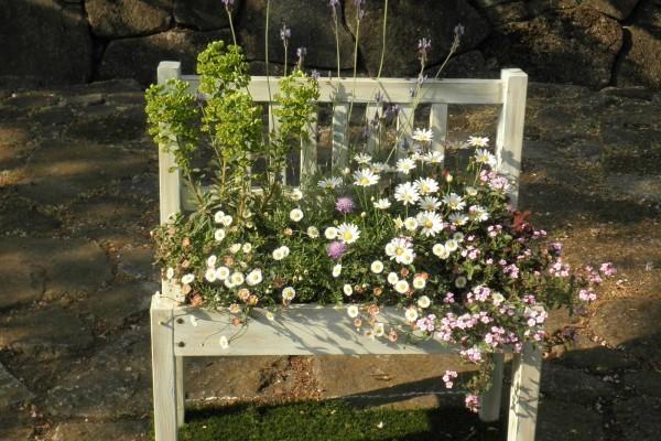 「花フェスタ&ガーデンフェスタ」で花のある風景を堪能