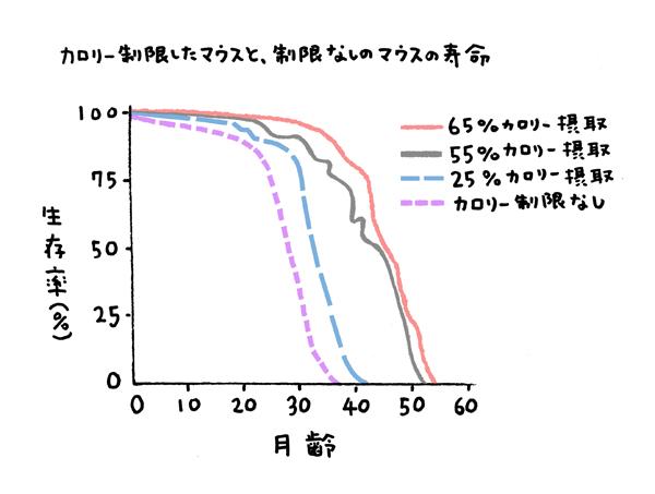 マウスを使った実験結果のグラフ