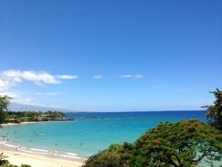 ハワイ島風景