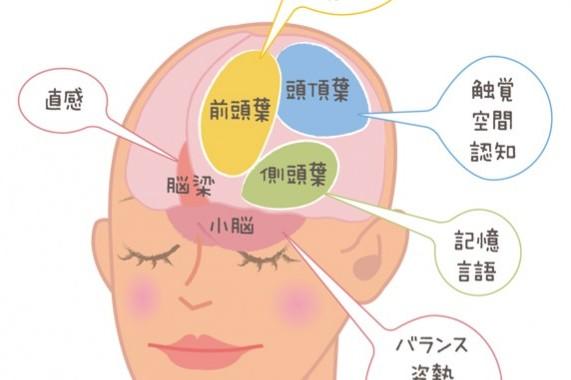 黒川伊保子先生に聞く脳育ての術7 ①まず自分の脳を知る!
