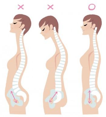 (イラスト右から) ●正しい姿勢…骨盤が立っていると、ヒップが上がってウエストがくびれ、バストも上向きに ●猫背…骨盤が後ろに傾いていると猫背に。お尻が垂れ、下腹部が出て、背中に肉がつきやすい ●反り腰…骨盤の前傾は、反り腰の原因になることが多いもの。一見姿勢がよさそうでも、実はNG