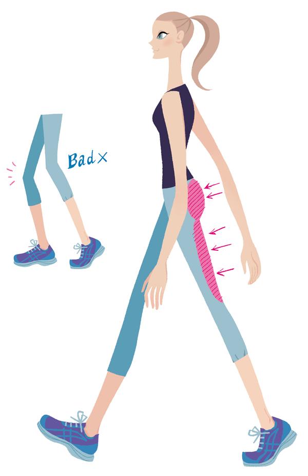 お尻と太ももの裏側の筋肉をたくさん使って歩くのが正しいウォーキング。膝をぐっと伸ばして颯爽と歩きましょう 左のイラストのように、膝をゆるめて小股でちょこちょこ歩くのは、いわば省エネ歩行。いくら早足でも、お尻や太ももなどの大きな筋肉は動きません