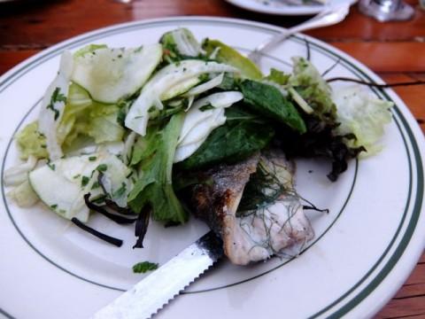ポートランドNed魚