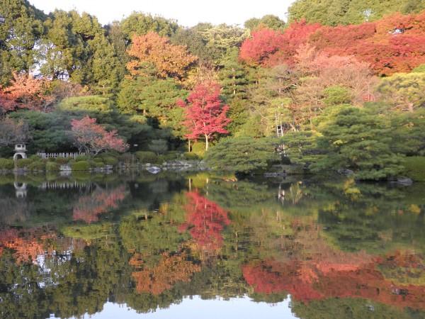 平安神宮庭園紅葉