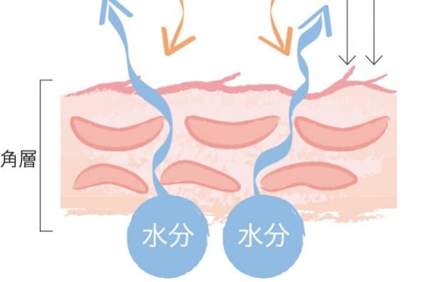 皮膚科医津田攝子先生に学ぶ、肌悩み別対処法