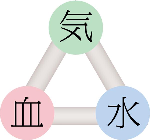 3つは異なる機能をもちながら、どれかひとつの流れが滞ると全体に影響をおよぼすことから、東洋医学では「三位一体」であると考えられています。