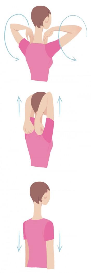(イラスト上から) ●両手の指先を首のつけ根近くにのせ、肘で大きな円を描くように肩を後ろへ回します ●数回ぐるぐる回したら、そのまま肘の先を天井へ向けて引き上げます。腕は頭の横につけて ●肩甲骨が後ろ中央に寄っているのを確認したら、一気に脱力して腕をストンと下ろします