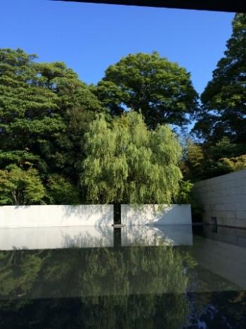 写真12 水鏡にうつる木々(青空) (360x480)