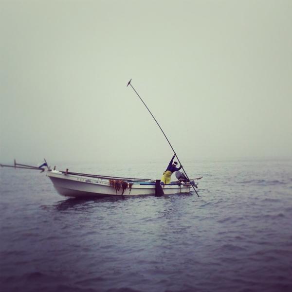 らうす昆布漁