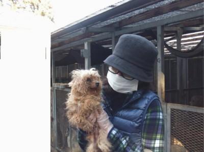劣悪な環境で飼育をしている悪徳繁殖業者から犬たちを救い出す、レスキュー活動