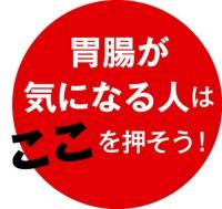 038-03_Web用