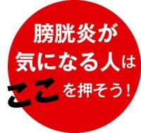 042-05_Web用