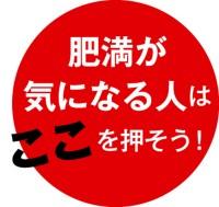 054-03_Web用