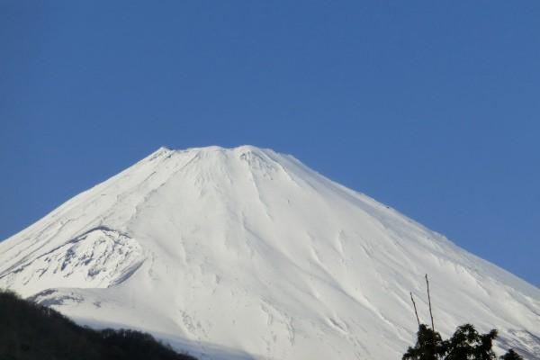 雪化粧した輝く世界遺産・富士山を眺めました