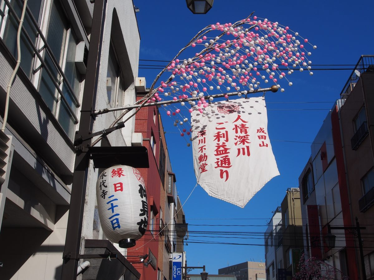吉田深川通り50