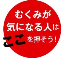 048-03_Web用