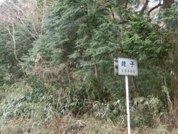 sCIMG0611 1