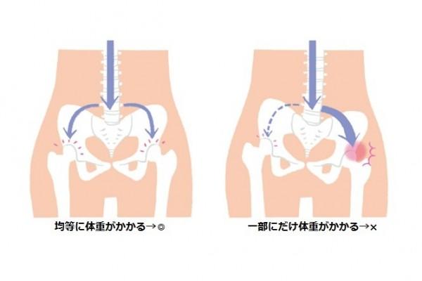 腰痛の原因、もしかして股関節かも?④ 股関節の仕組み その2