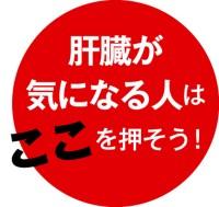 093-03_Web用