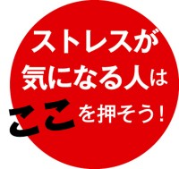 087-04_Web用