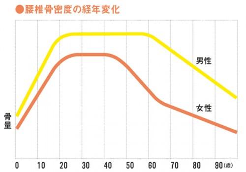 女性の骨量は40歳を過ぎた頃から急激に減少します。出典/「ロコモパンフレット2014年度版」より