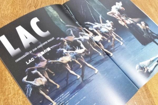 独特の世界観でファンを魅了する、モナコ公国モンテカルロ・バレエ団『LAC~白鳥の湖~』