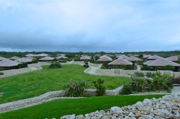 沖縄八重山・竹富島、「命草」=ハーブの力で命の洗濯!