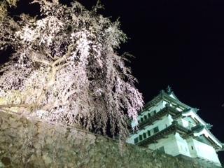 小暮弘前城