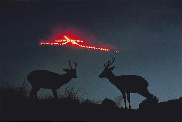 吉田なら鹿と大文字