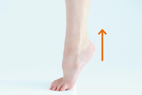 美賢人の「脚&足」対策⑧足首とふくらはぎを刺激してメリハリ美脚に