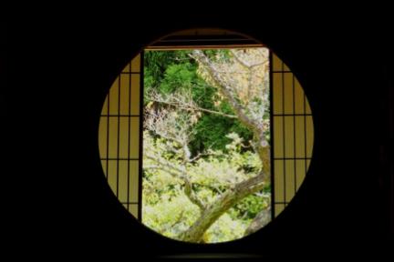京都の奥座敷のような寺で、 移り行く季節を愛でる/雲龍院前編
