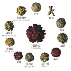 大正製薬TU_tsurukokemomo