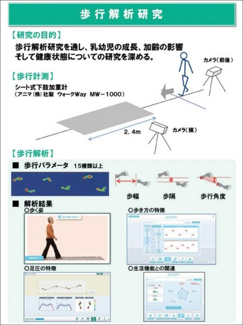 歩行支援プログラム解析結果の図
