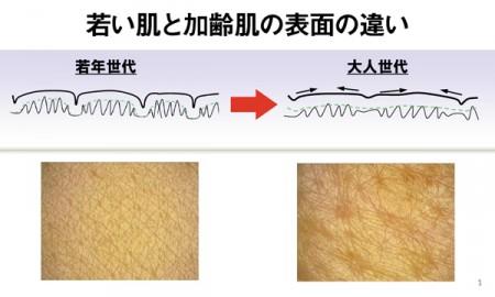 エイジングケアコスメ 肌表面写真