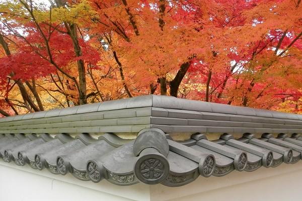 東山エリアの朝の紅葉狩り散歩 南禅寺から永観堂、真如堂へ