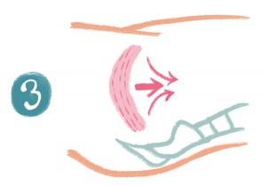 最後に、骨盤底筋全体を、お腹の中に引き込むようにして動かします。息を吐きながら行うのがコツ