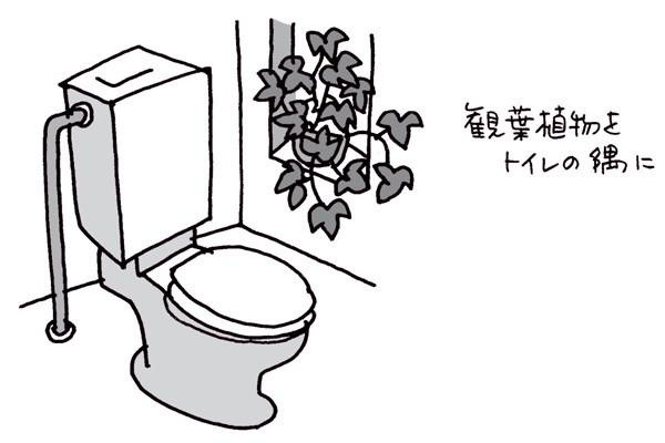 金運をアップさせたい③トイレに陽の気を取り入れてさらに運気UP/林 秀靜さんの「おそうじ風水」
