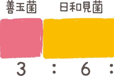 美腸ケア①「腸」に関する最新情報/インフルエンザやアレルギー対策も腸活から!