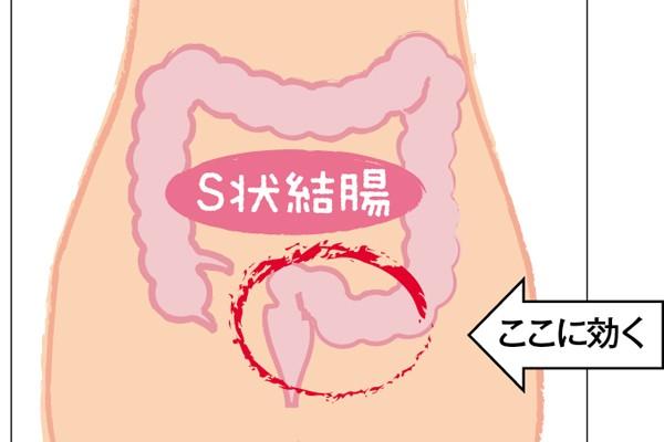 美腸ケア⑦「ねじれ腸マッサージ」で超ガンコな便秘と決別!③S状結腸の歪みに