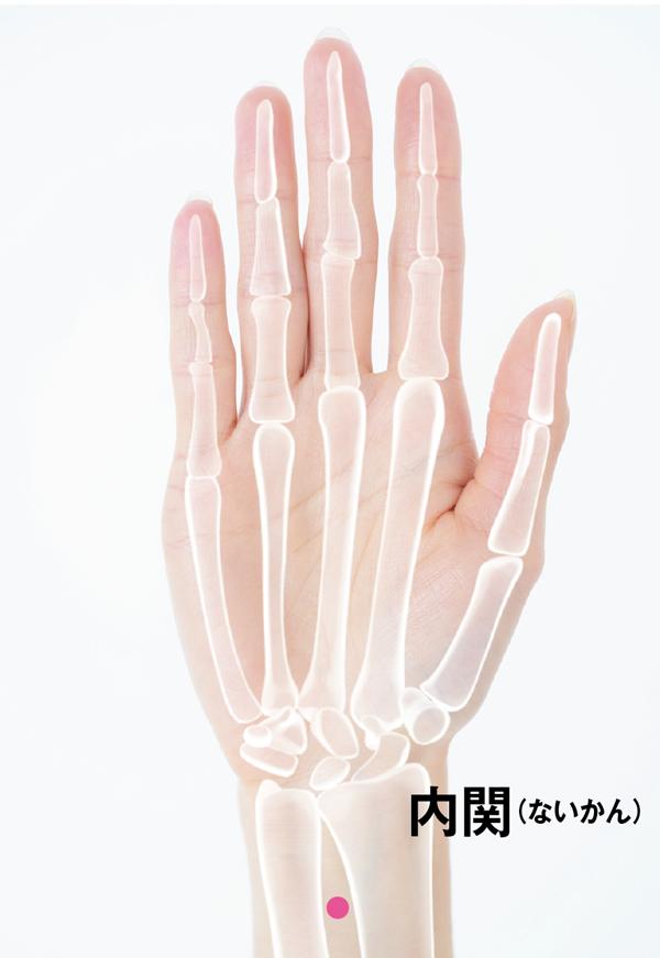 [内関(ナイカン]ツボ位置