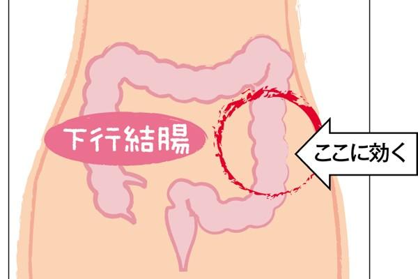 美腸ケア⑦「ねじれ腸マッサージ」で超ガンコな便秘と決別!②下行結腸の歪みに