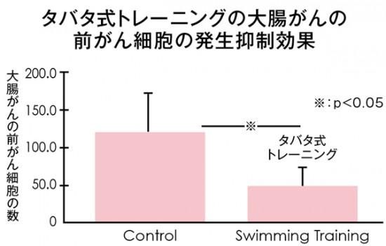 ラット実験で、週5回、高強度のタバタ式トレーニング(スイミング)を行わせたところ、何もしなかった場合に比べて、前がん細胞の数が3割程度にまで減少 資料提供/田畑泉先生