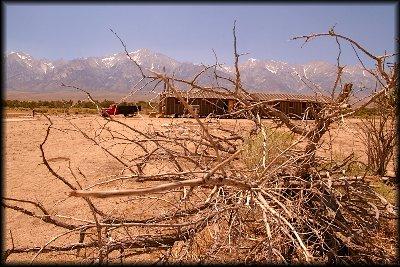 白井砂漠9