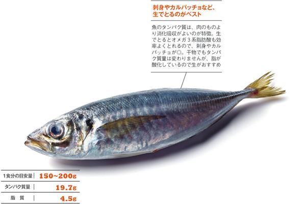 """正しい""""タンパク質""""ライフ PART4/高タンパク質食材徹底研究!【魚】"""