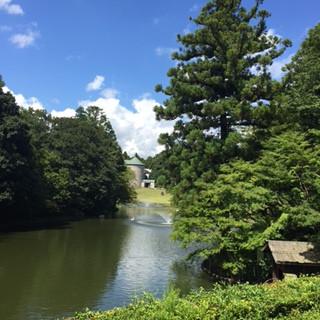 小暮美奈子DIC川村記念美術館