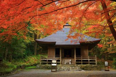 大好評企画、賞品は旅行券!「秋を感じるおでかけ写真」コンテスト