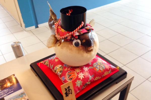 下関・唐戸市場で美味しいフグを食べるには……!?