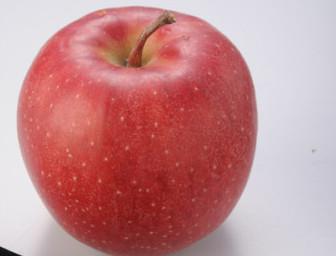 りんご(ミラクル免疫力)