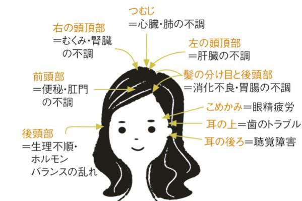 """厳選! 「薄毛」と「白髪」の予防法と治療法:「白髪」対策④/STOP""""老け白髪""""のための生活改善"""